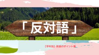 山の中の木製の双方向を示す標識に「反対語」と表記されている。